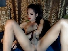 Slutty nasty shemale babe faps cock hard